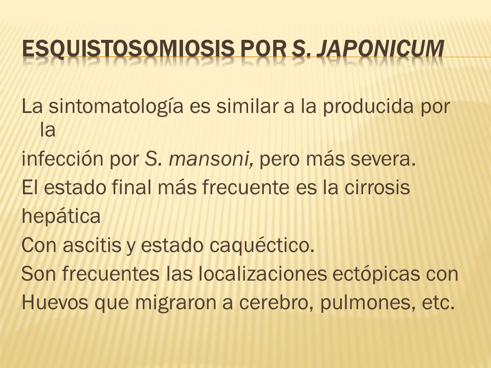 Esquistosomiosis por S. japonicum