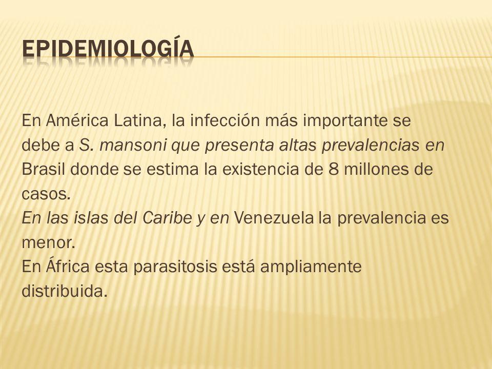 Epidemiología En América Latina, la infección más importante se