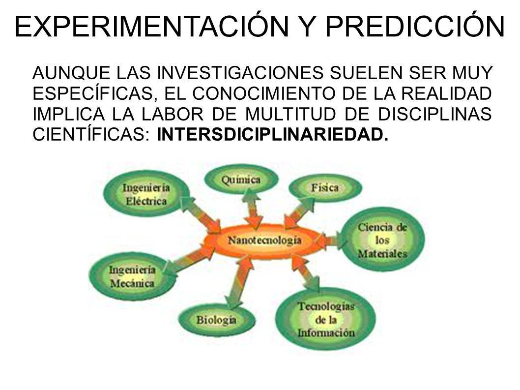 EXPERIMENTACIÓN Y PREDICCIÓN