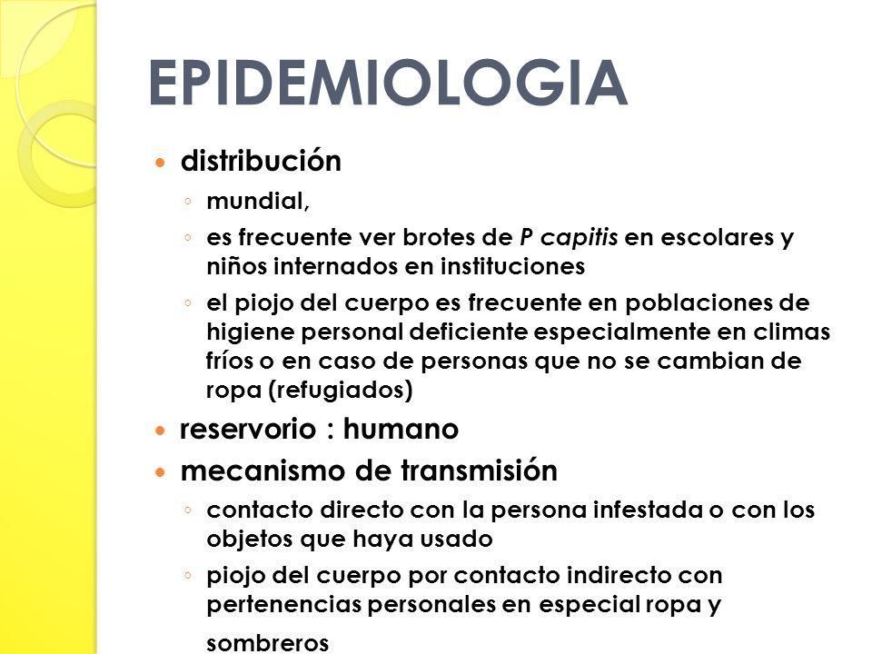 EPIDEMIOLOGIA distribución reservorio : humano