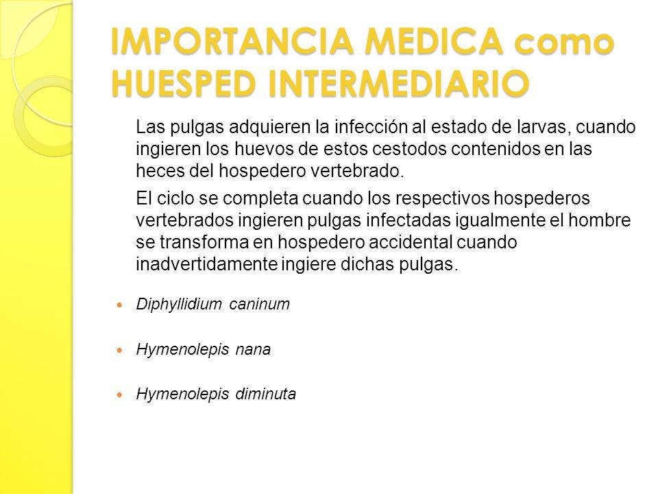 IMPORTANCIA MEDICA como HUESPED INTERMEDIARIO