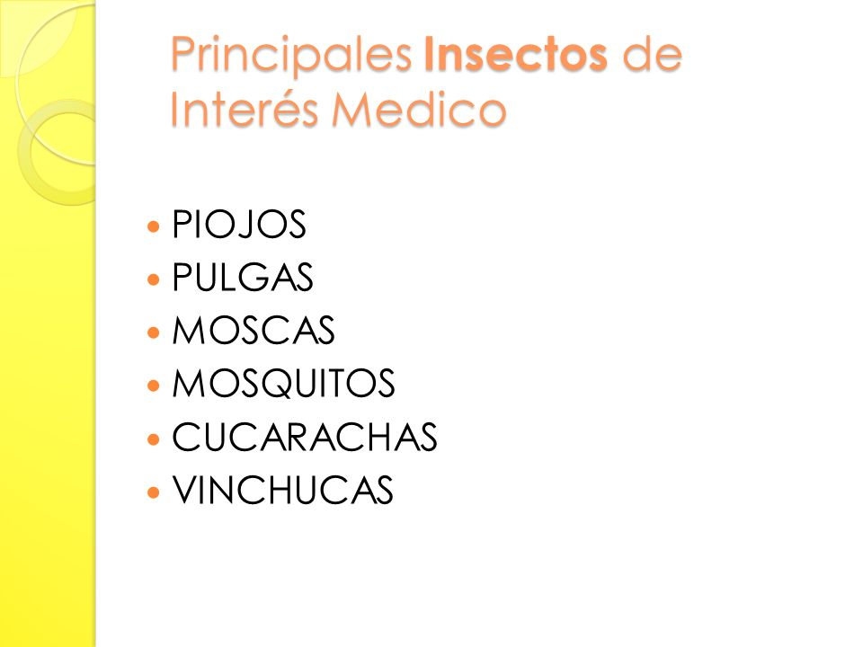 Principales Insectos de Interés Medico
