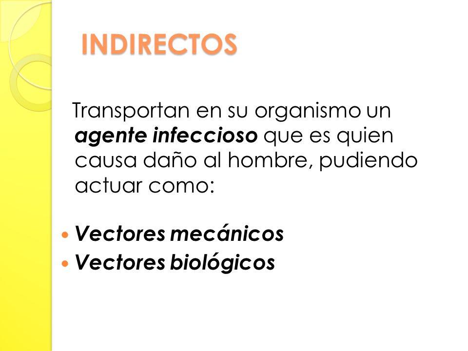 INDIRECTOS Transportan en su organismo un agente infeccioso que es quien causa daño al hombre, pudiendo actuar como: