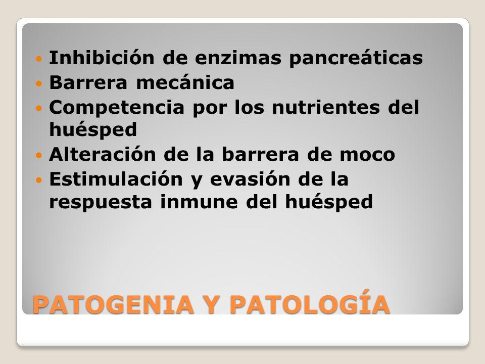 PATOGENIA Y PATOLOGÍA Inhibición de enzimas pancreáticas
