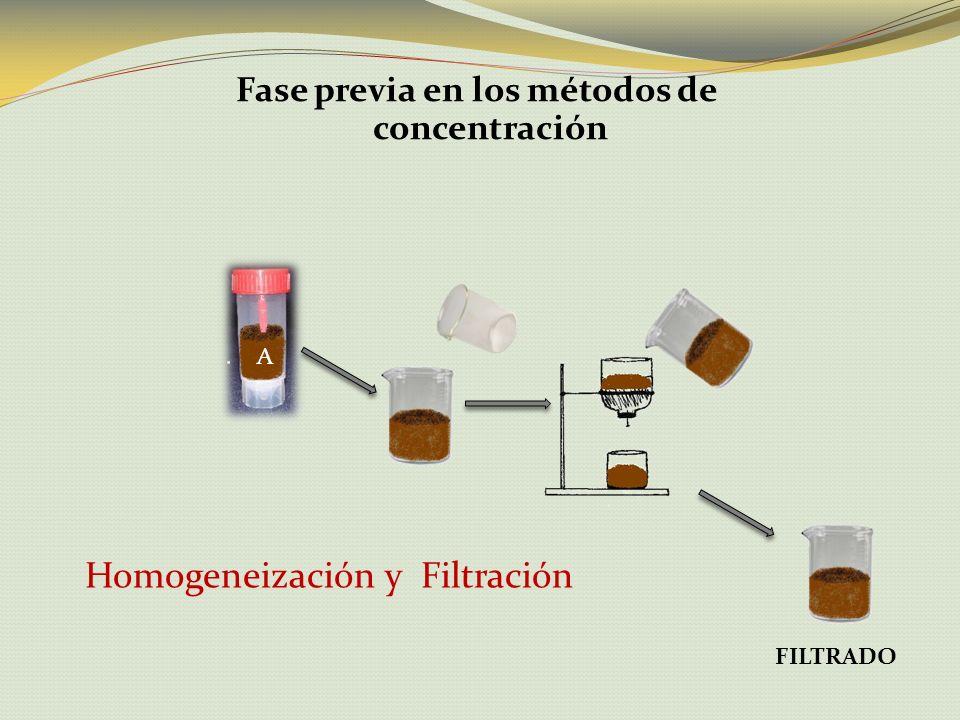Fase previa en los métodos de concentración