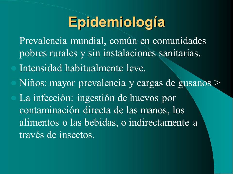 EpidemiologíaPrevalencia mundial, común en comunidades pobres rurales y sin instalaciones sanitarias.