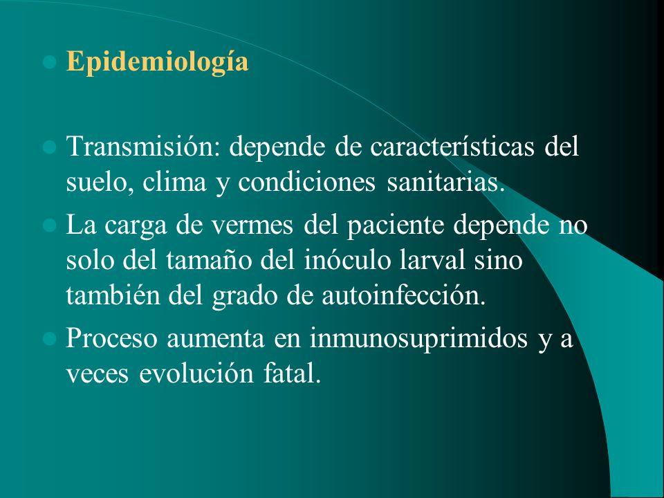 Epidemiología Transmisión: depende de características del suelo, clima y condiciones sanitarias.