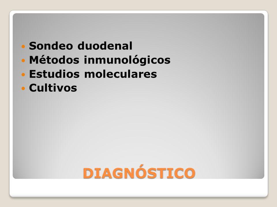DIAGNÓSTICO Sondeo duodenal Métodos inmunológicos Estudios moleculares