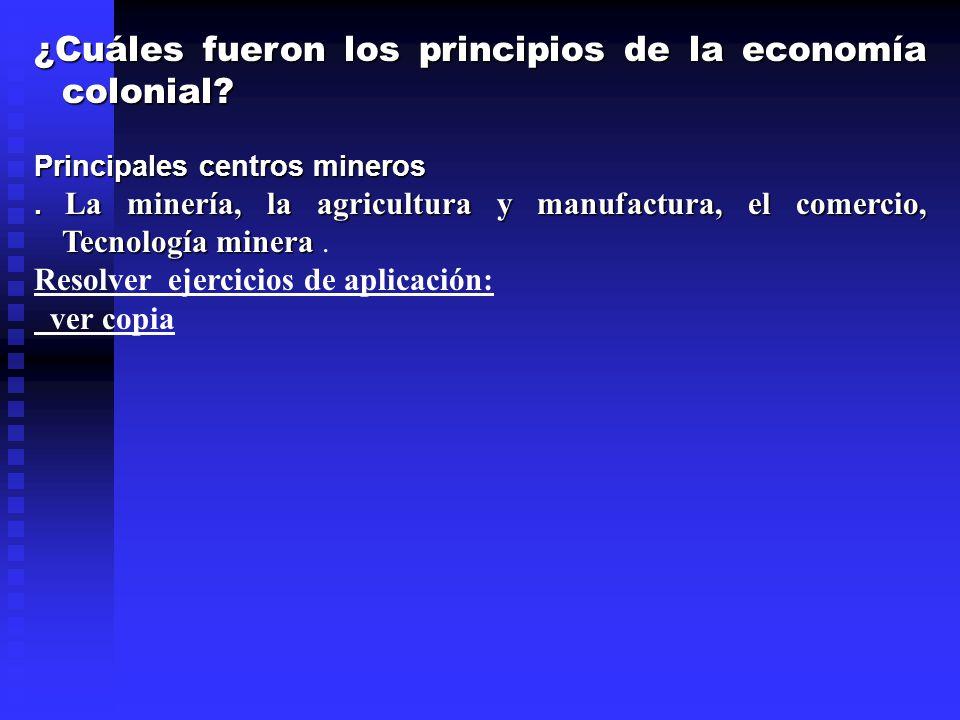 ¿Cuáles fueron los principios de la economía colonial