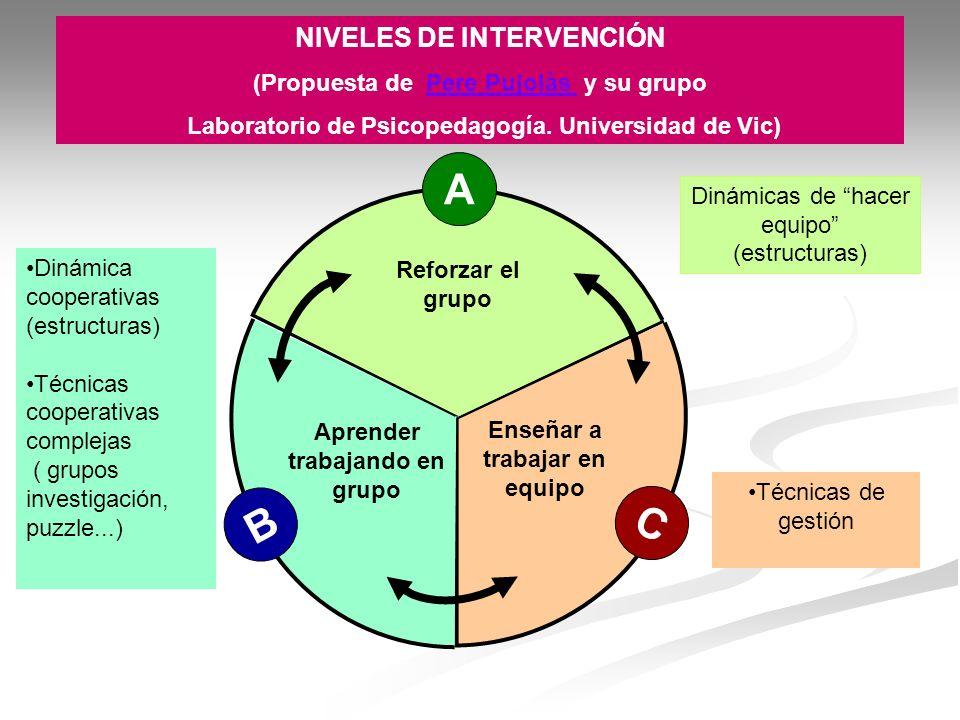 A B C NIVELES DE INTERVENCIÓN (Propuesta de Pere Pujolàs y su grupo