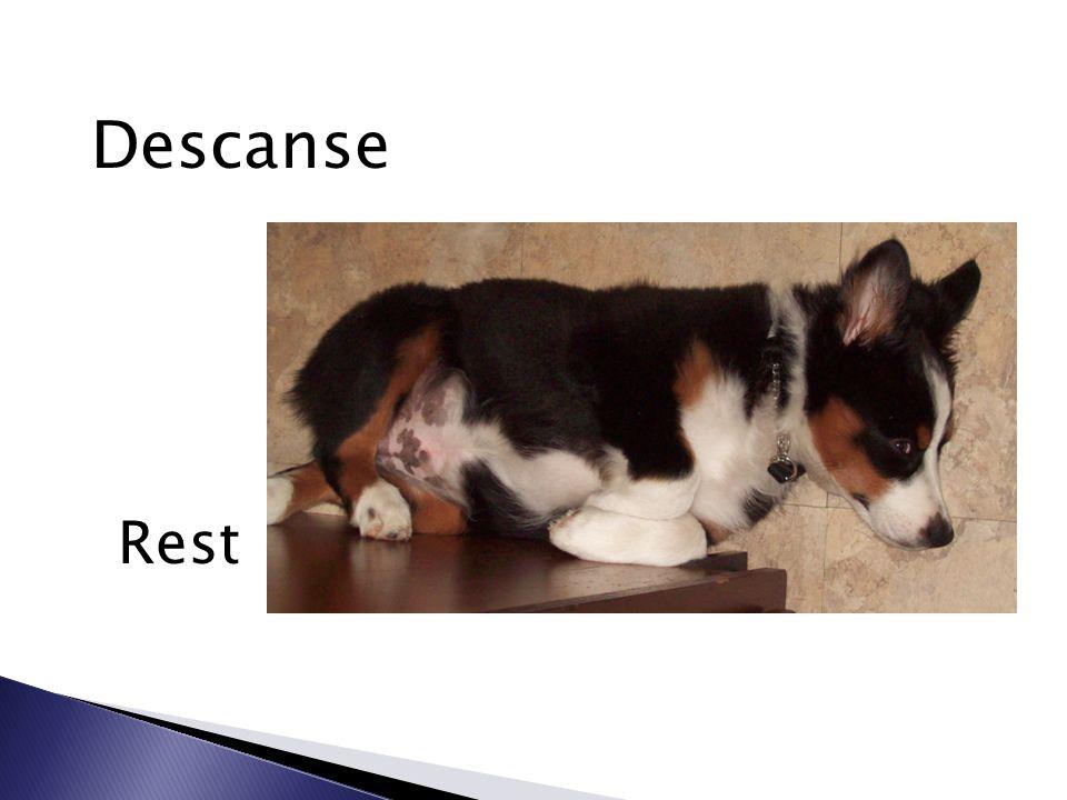 Descanse Rest