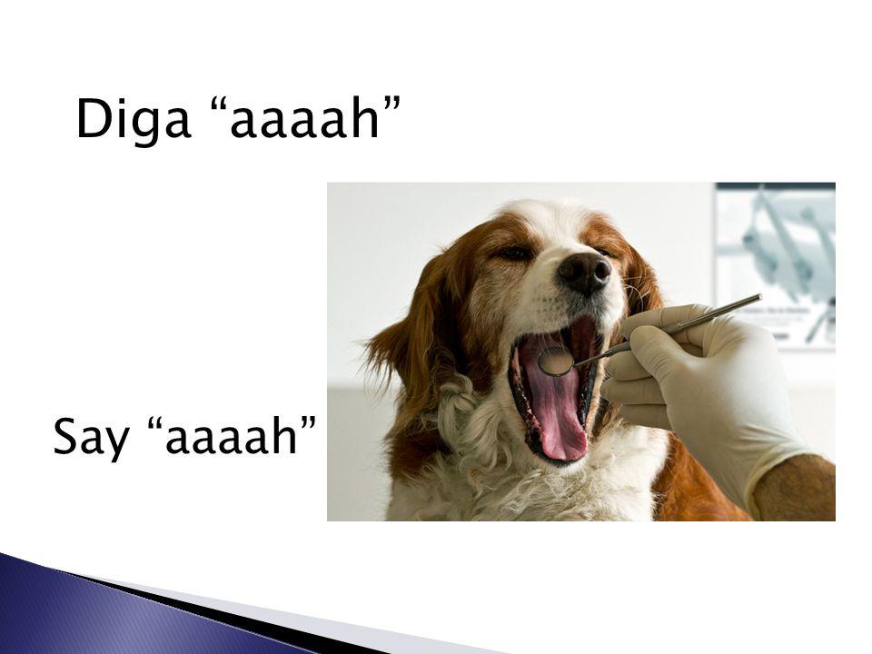 Diga aaaah Say aaaah