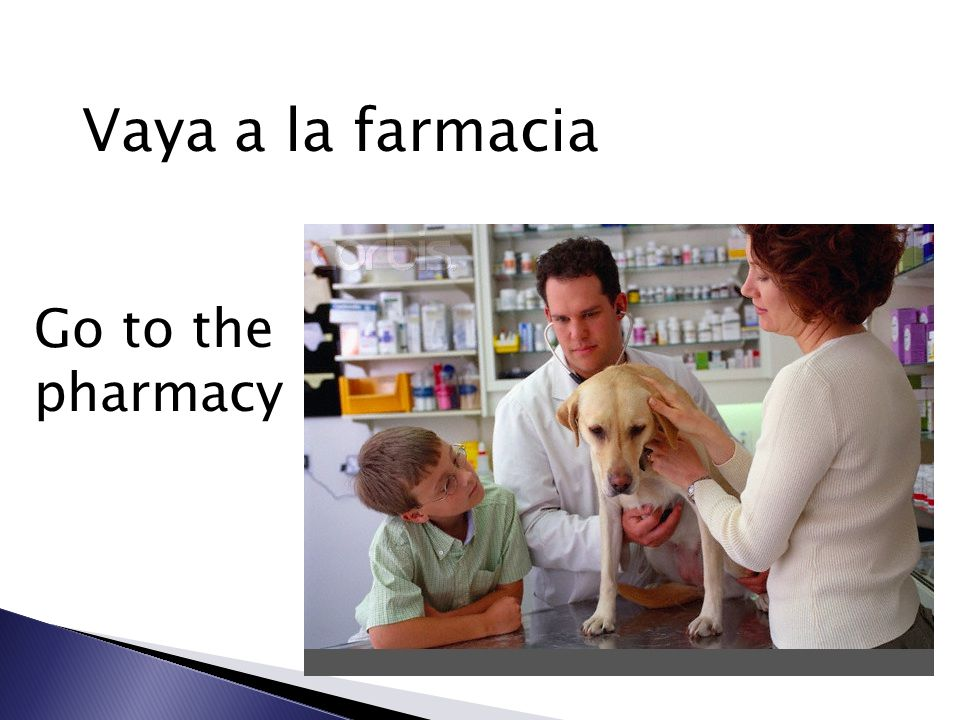 Vaya a la farmacia Go to the pharmacy