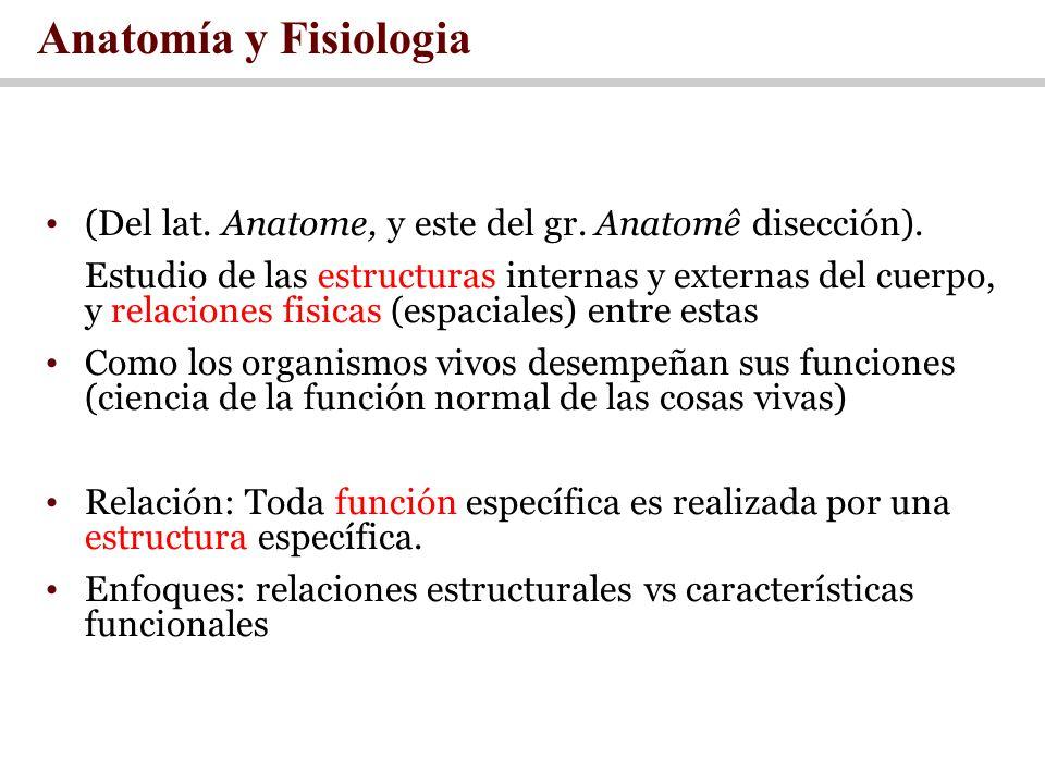 Anatomía y Fisiologia (Del lat. Anatome, y este del gr. Anatomê disección).