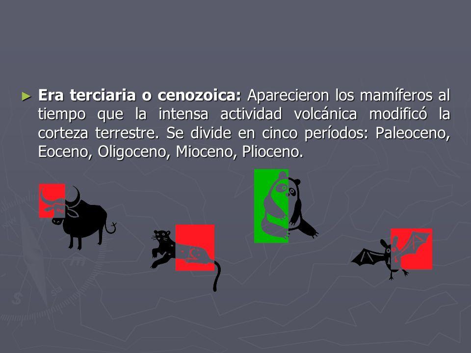 Era terciaria o cenozoica: Aparecieron los mamíferos al tiempo que la intensa actividad volcánica modificó la corteza terrestre.