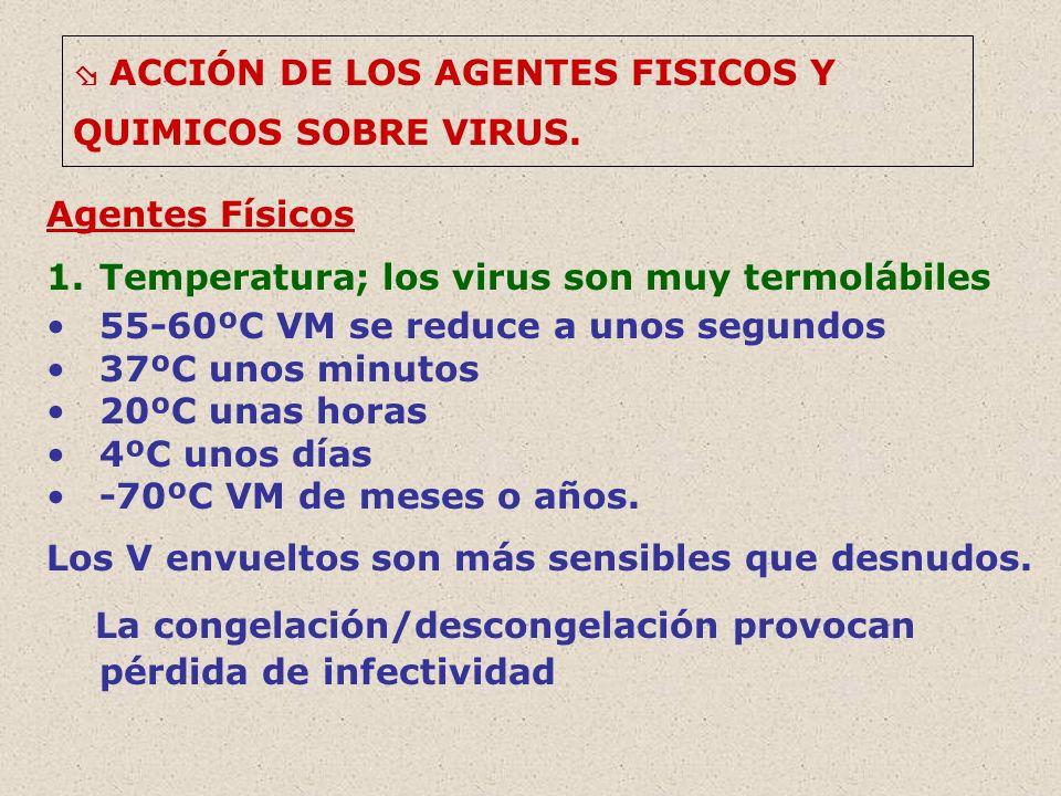 Temperatura; los virus son muy termolábiles