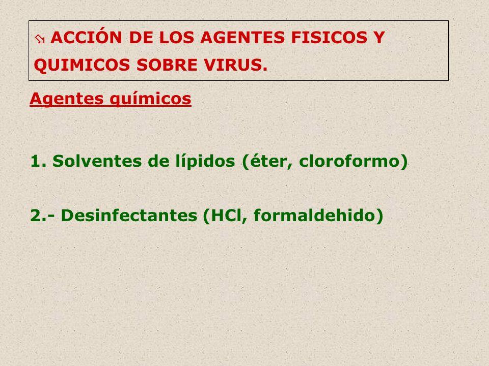 1. Solventes de lípidos (éter, cloroformo)