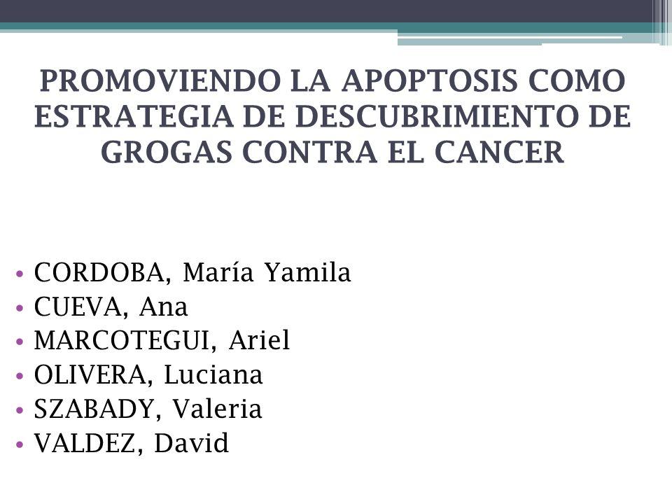 PROMOVIENDO LA APOPTOSIS COMO ESTRATEGIA DE DESCUBRIMIENTO DE GROGAS CONTRA EL CANCER