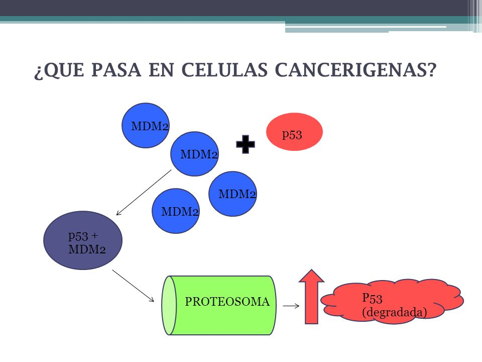 ¿QUE PASA EN CELULAS CANCERIGENAS