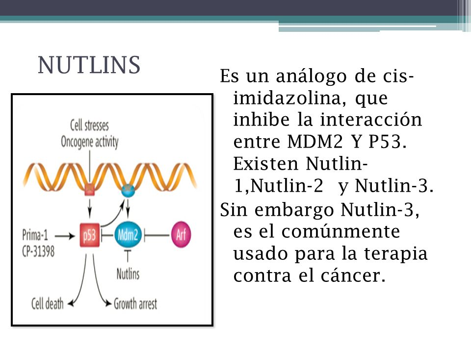 NUTLINS