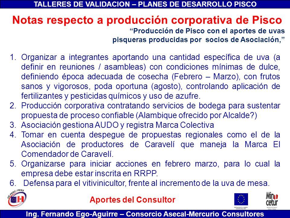 Notas respecto a producción corporativa de Pisco