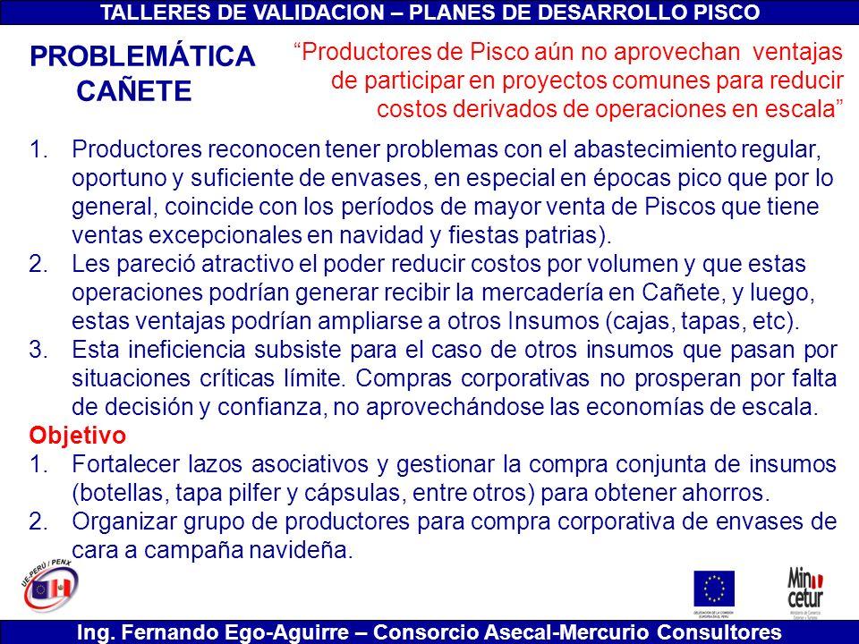 TALLERES DE VALIDACION – PLANES DE DESARROLLO PISCO