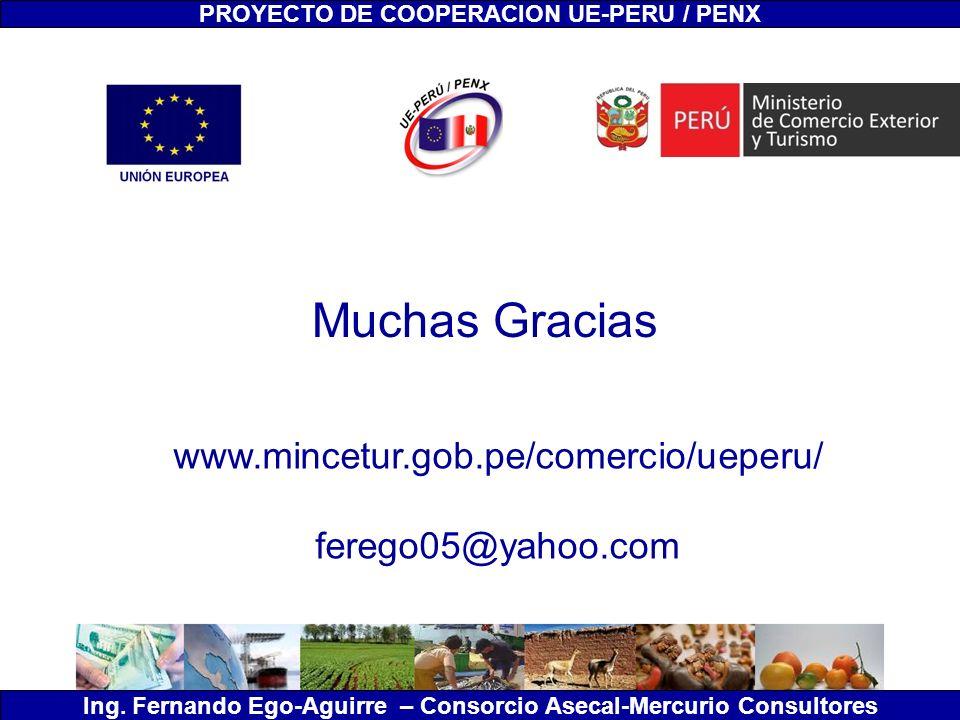 Muchas Gracias www.mincetur.gob.pe/comercio/ueperu/ ferego05@yahoo.com