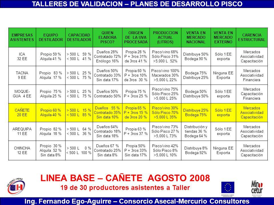 LINEA BASE – CAÑETE AGOSTO 2008