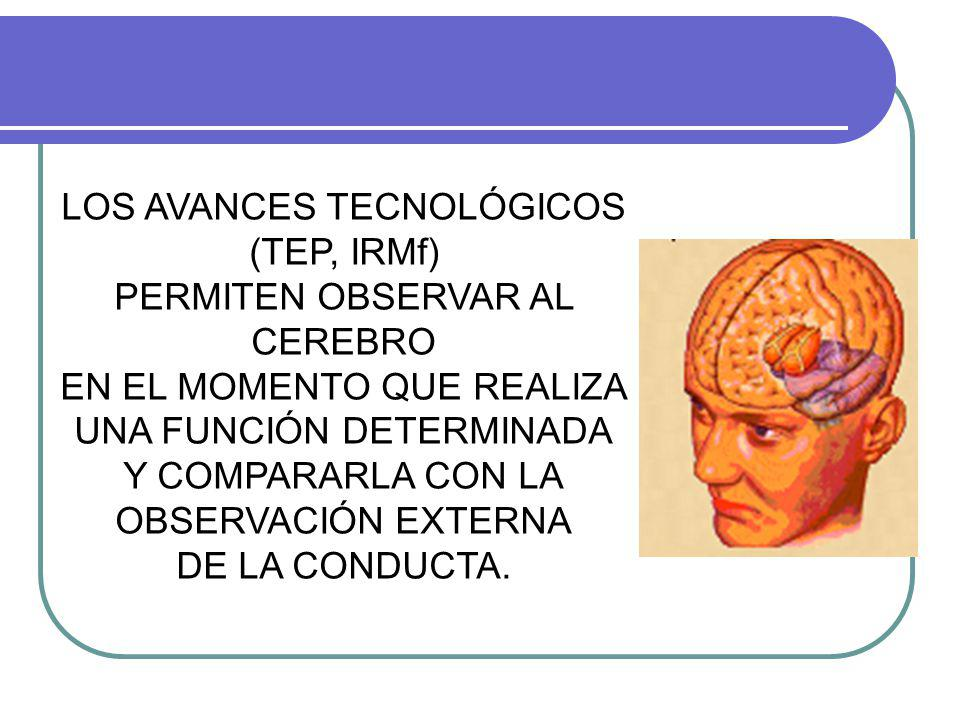 LOS AVANCES TECNOLÓGICOS (TEP, IRMf) PERMITEN OBSERVAR AL CEREBRO