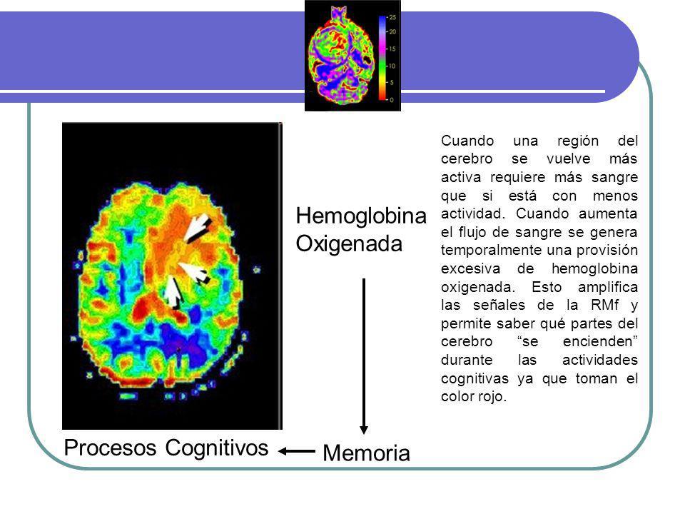 Hemoglobina Oxigenada Procesos Cognitivos Memoria