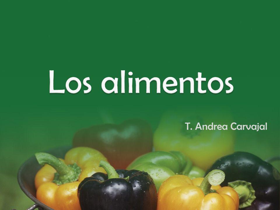 Los alimentos T. Andrea Carvajal