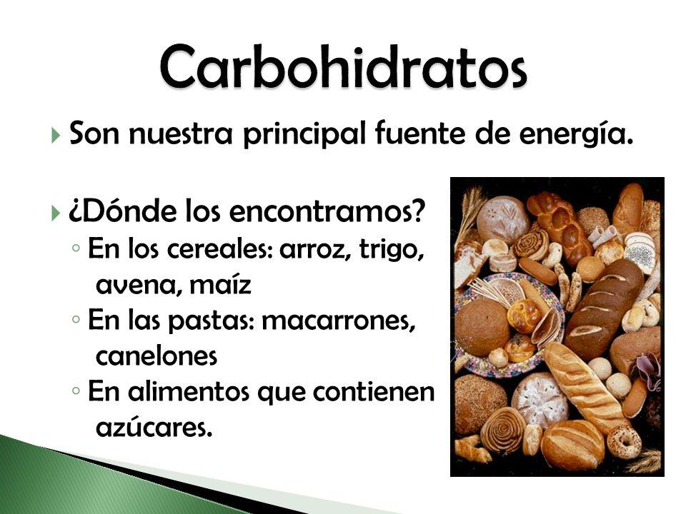 Carbohidratos Son nuestra principal fuente de energía.