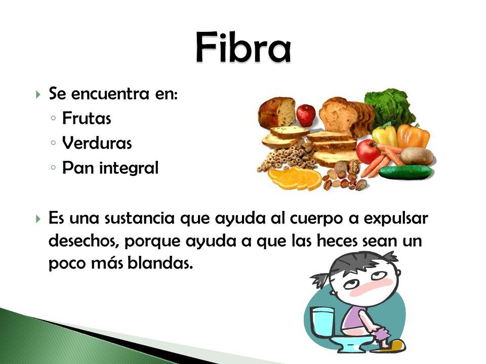 Fibra Se encuentra en: Frutas Verduras Pan integral