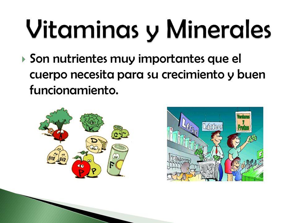 Vitaminas y Minerales Son nutrientes muy importantes que el cuerpo necesita para su crecimiento y buen funcionamiento.