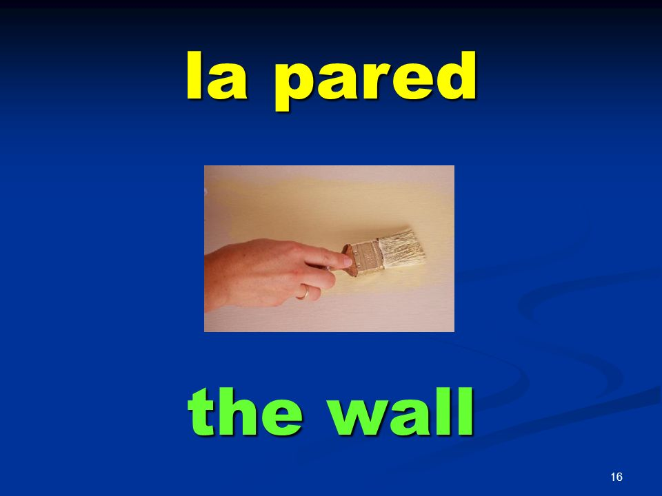 la pared the wall