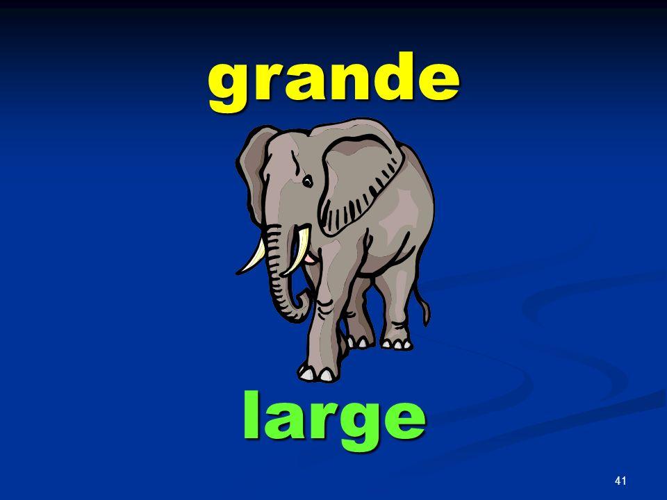 grande large