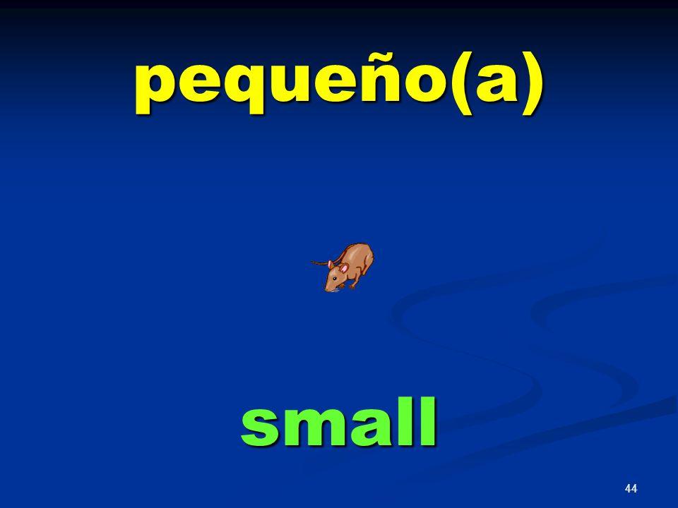 pequeño(a) small