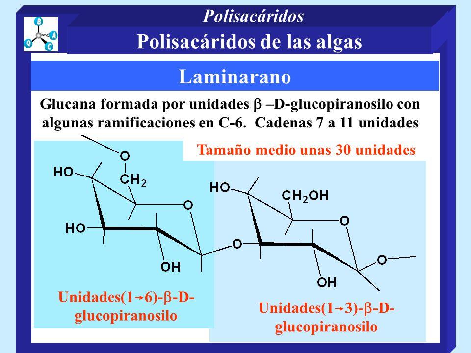 Polisacáridos de las algas Laminarano