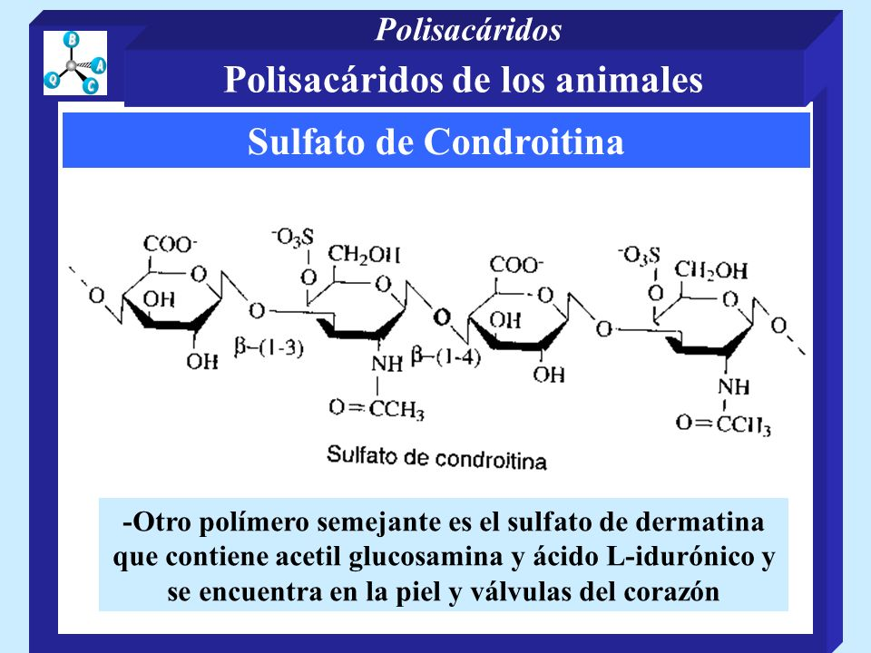 Polisacáridos de los animales Sulfato de Condroitina