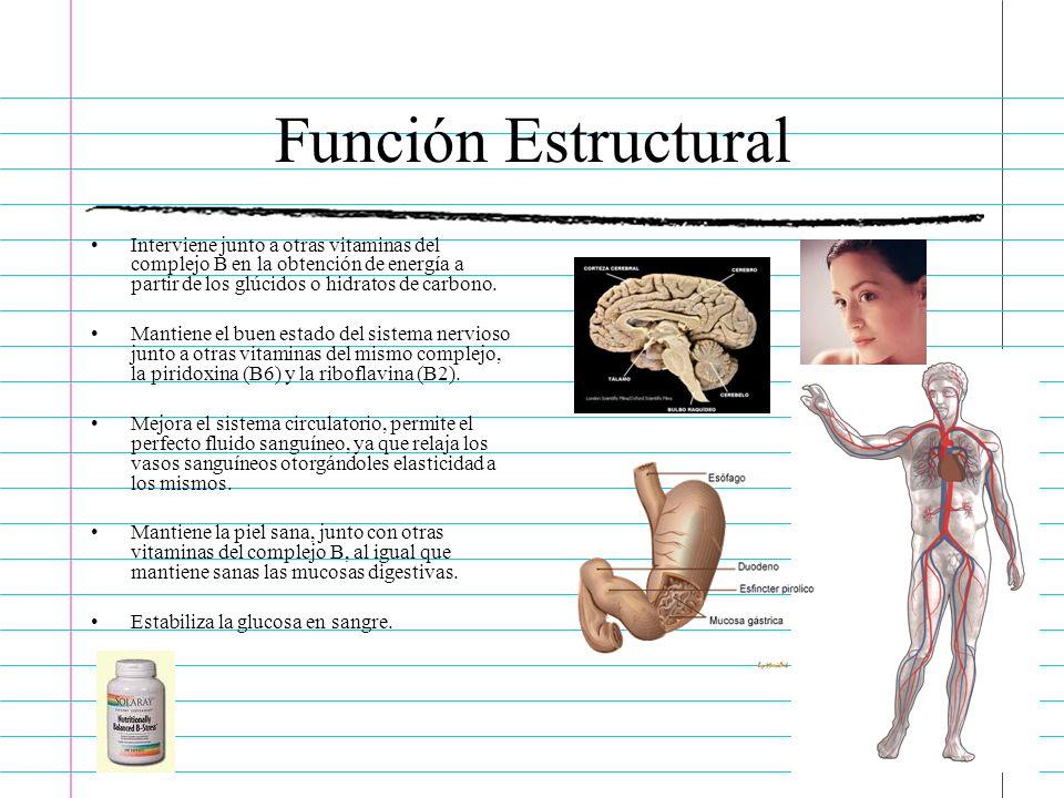 Función EstructuralInterviene junto a otras vitaminas del complejo B en la obtención de energía a partir de los glúcidos o hidratos de carbono.