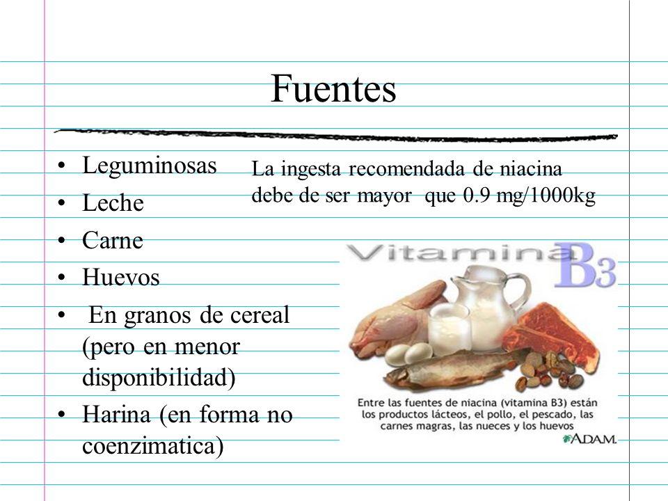 Fuentes Leguminosas Leche Carne Huevos