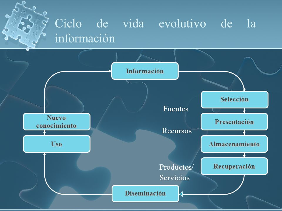 Ciclo de vida evolutivo de la información