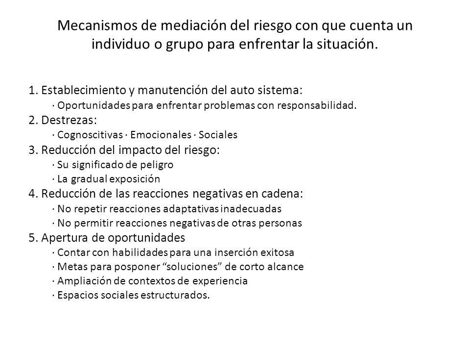 Mecanismos de mediación del riesgo con que cuenta un individuo o grupo para enfrentar la situación.