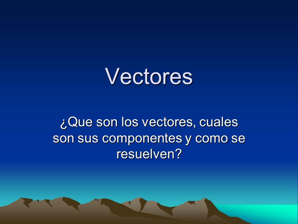 ¿Que son los vectores, cuales son sus componentes y como se resuelven