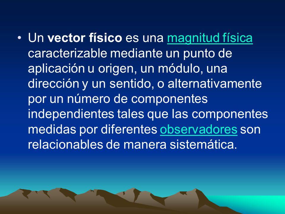 Un vector físico es una magnitud física caracterizable mediante un punto de aplicación u origen, un módulo, una dirección y un sentido, o alternativamente por un número de componentes independientes tales que las componentes medidas por diferentes observadores son relacionables de manera sistemática.