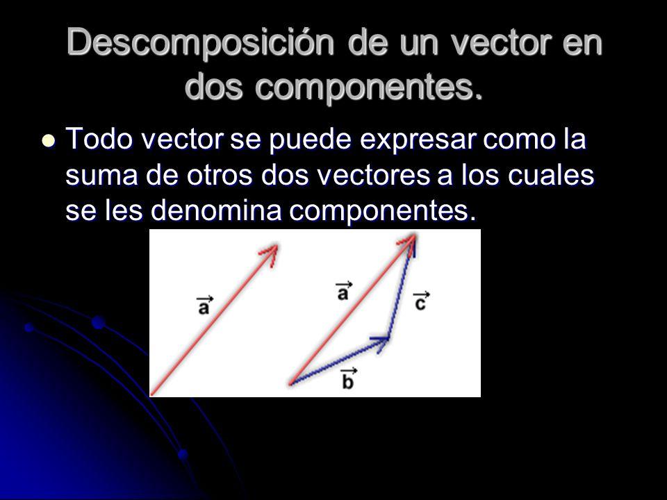 Descomposición de un vector en dos componentes.