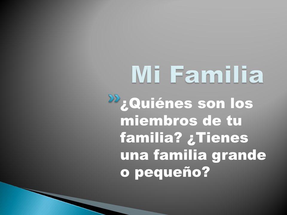 Mi Familia ¿Quiénes son los miembros de tu familia ¿Tienes una familia grande o pequeño
