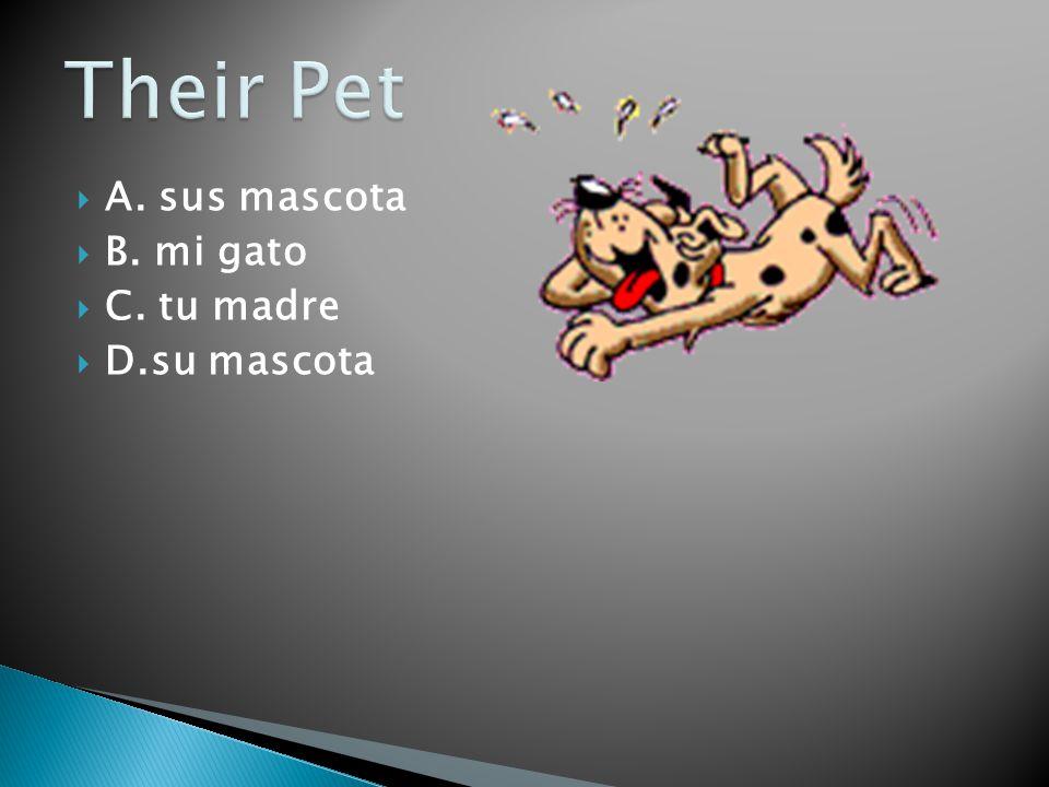 Their Pet A. sus mascota B. mi gato C. tu madre D.su mascota
