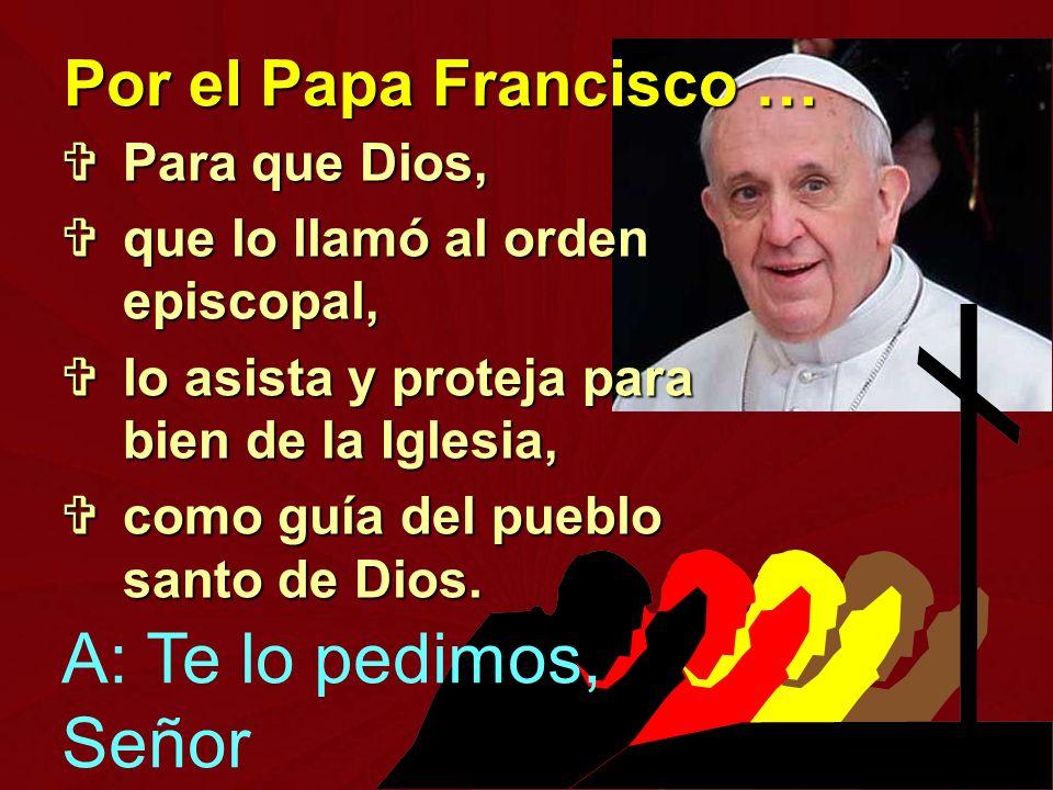 A: Te lo pedimos, Señor Por el Papa Francisco … Para que Dios,
