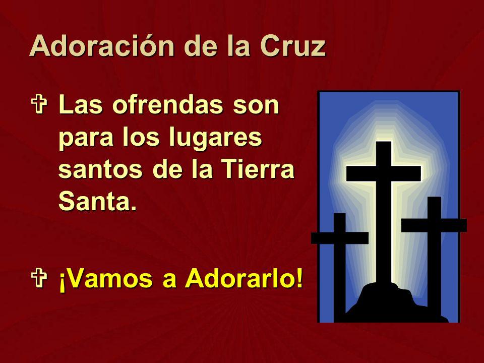 Adoración de la Cruz Las ofrendas son para los lugares santos de la Tierra Santa.